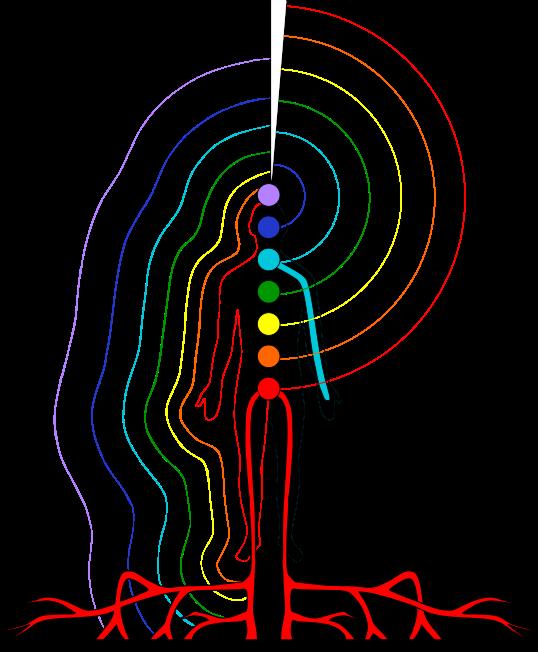 chakra-logo-brofman-foundation