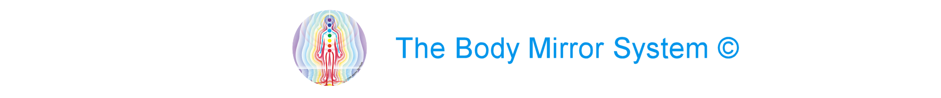The Body Mirror System